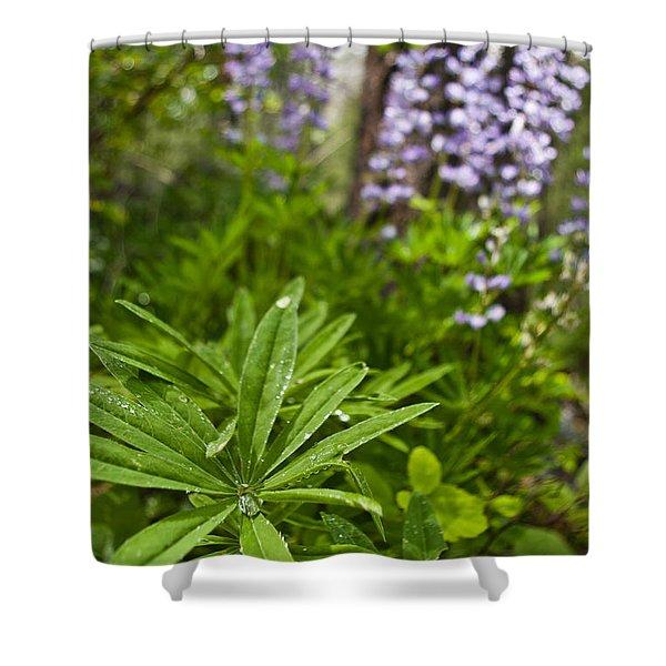 Lupine Leaf Shower Curtain