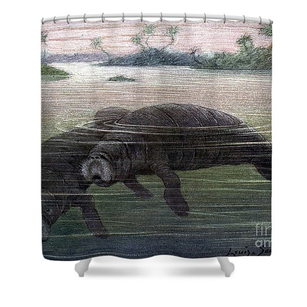 Manatees, Vulnerble Species Shower Curtain
