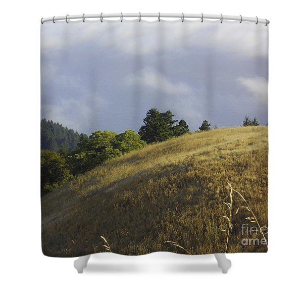 Mt. Tamalpais Study #1 Shower Curtain