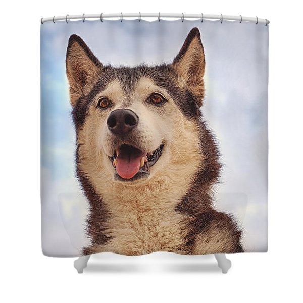 Muki  Shower Curtain