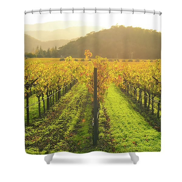 Napa Valley California Vineyard In The Fall Shower Curtain