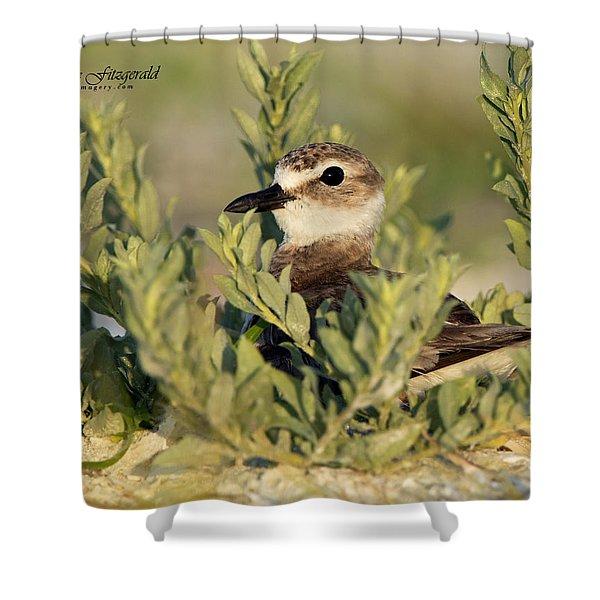 Nesting Shower Curtain