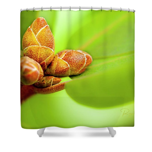 New Birth Shower Curtain