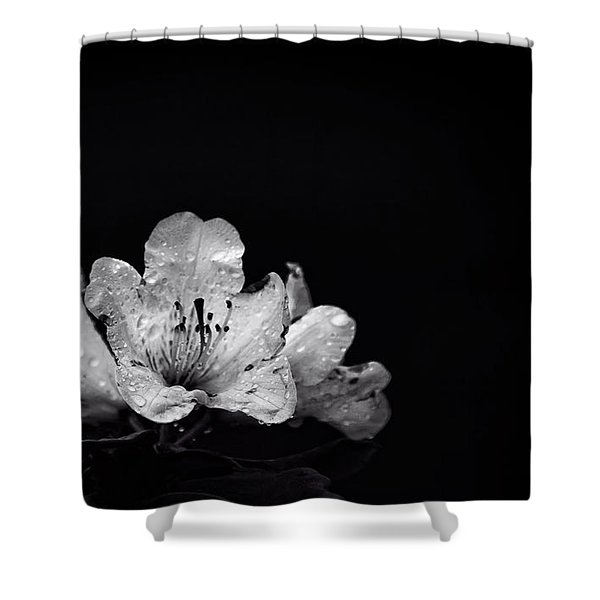 Nocturnal Blossom Shower Curtain
