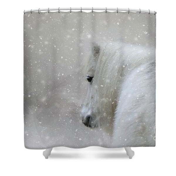 On A Cold Winter Day Shower Curtain