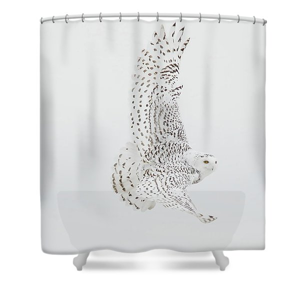On The Move. Shower Curtain