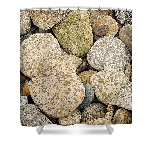 One Fine Day Shower Curtain