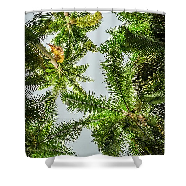 Palm Trees And Blue Sky Shower Curtain