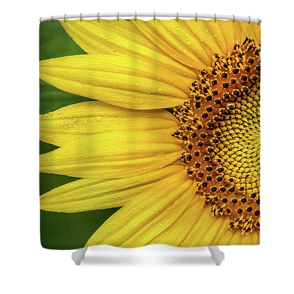 Partial Sunflower Shower Curtain