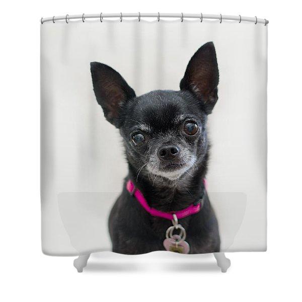 Perlita 2 Shower Curtain