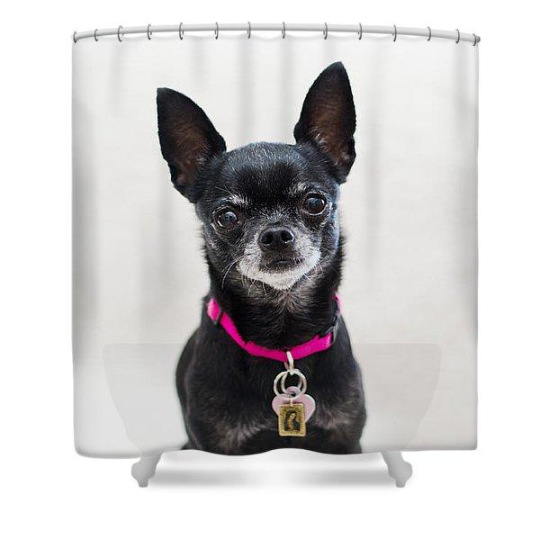 Perlita Shower Curtain