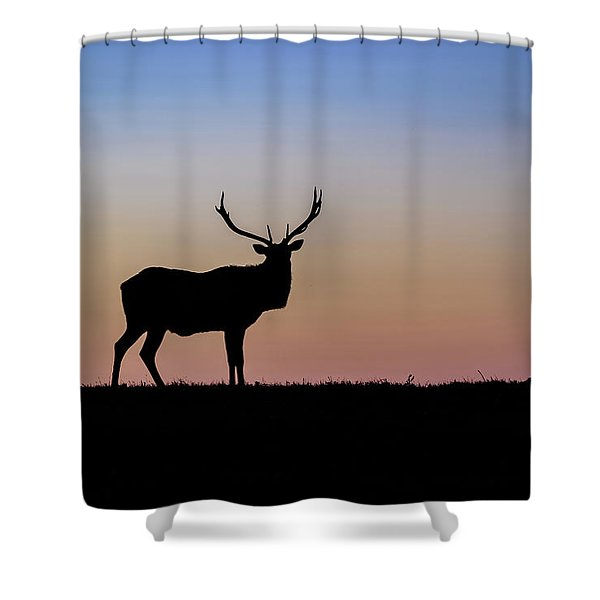 Point Reyes Elk Shower Curtain
