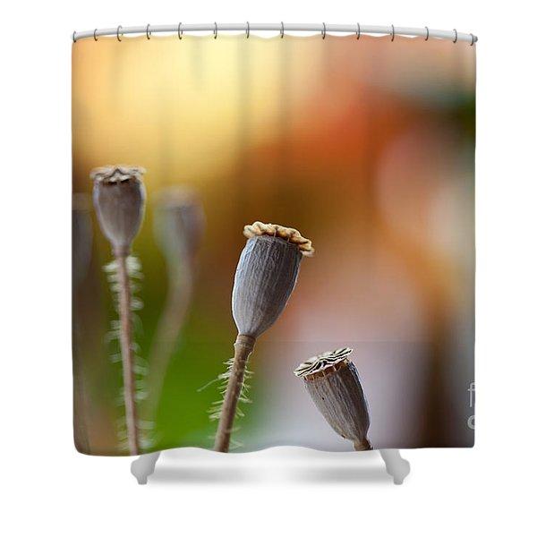 Poppy Pods Shower Curtain
