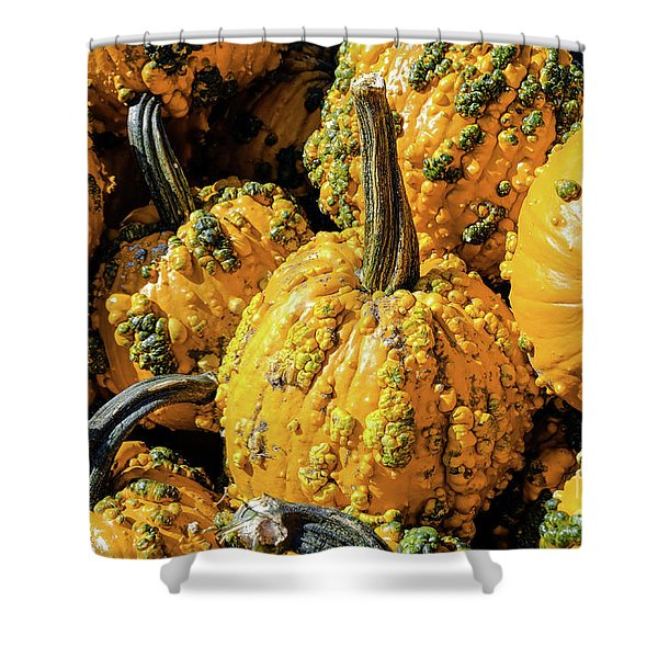 Pumpkins With Warts Shower Curtain
