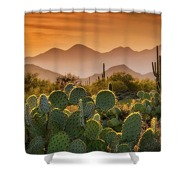 Pure Sonoran Gold  Shower Curtain