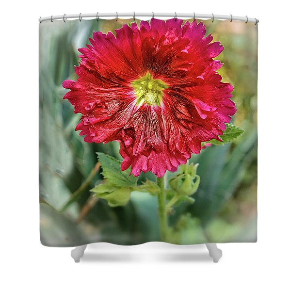 Red Hollyhock Shower Curtain