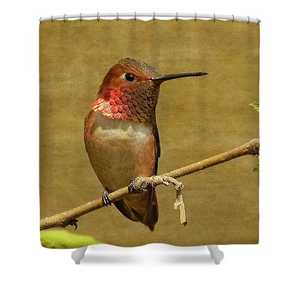 Resting Shower Curtain