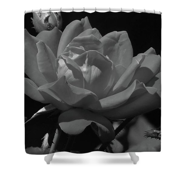 Rosey Bloom Shower Curtain