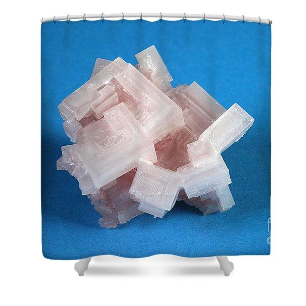 Salton Sea Salt Shower Curtain