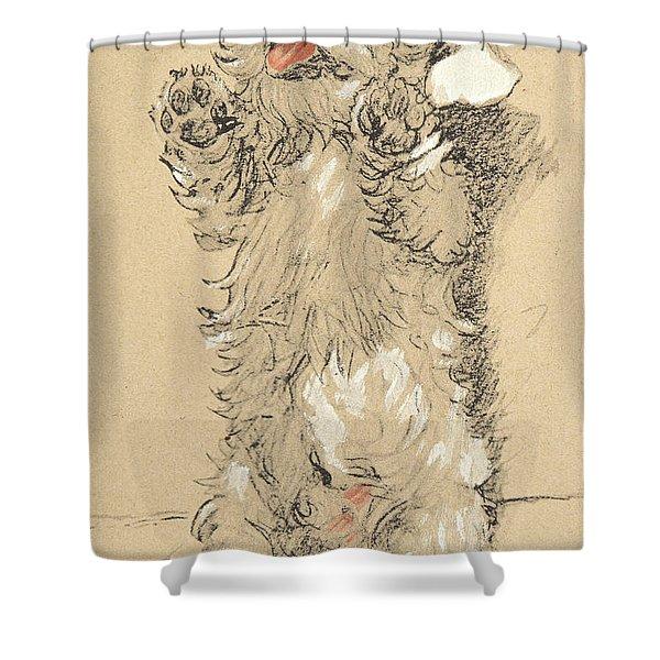 Sealyham Shower Curtain