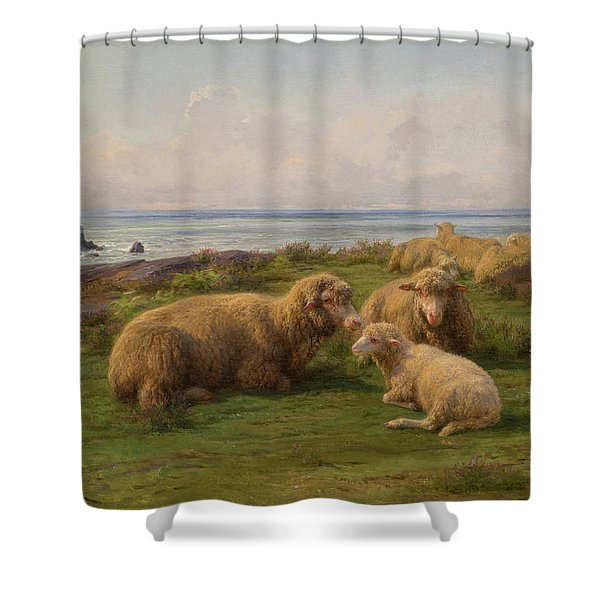Sheep By The Sea Shower Curtain