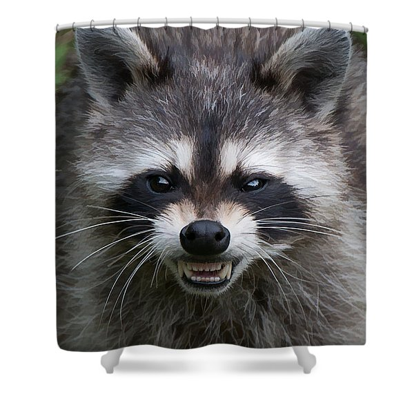 Snarling Raccoon Shower Curtain