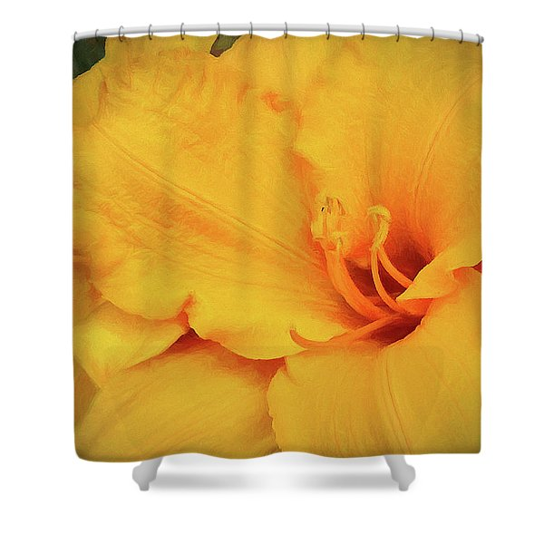 Softly And Tenderly  Shower Curtain