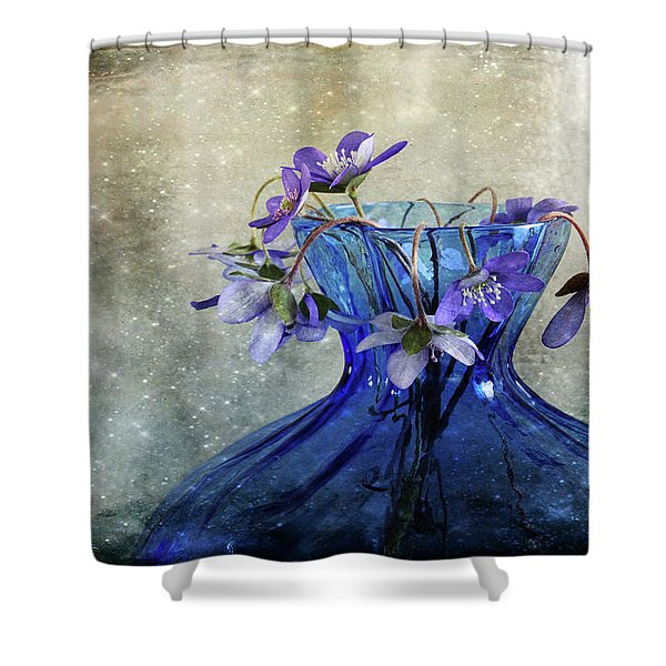 Spring Greeting Shower Curtain