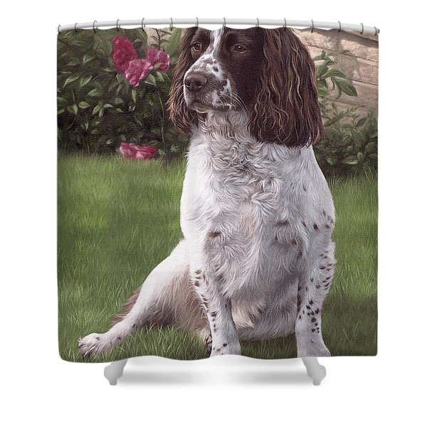 Springer Spaniel Painting Shower Curtain