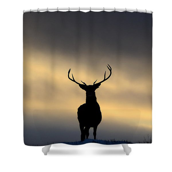 Stag Silhouette  Shower Curtain