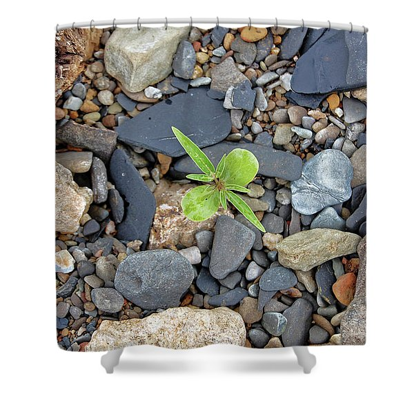 Stand Out From The Crowd Shower Curtain