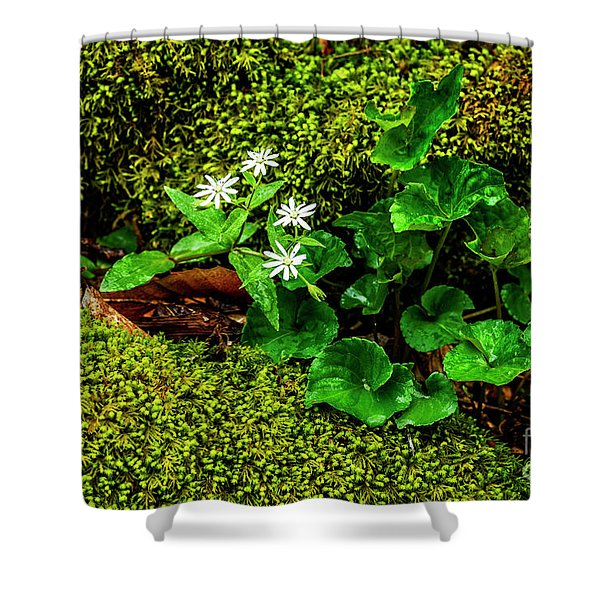 Star Chickweed Mossy Rock Shower Curtain