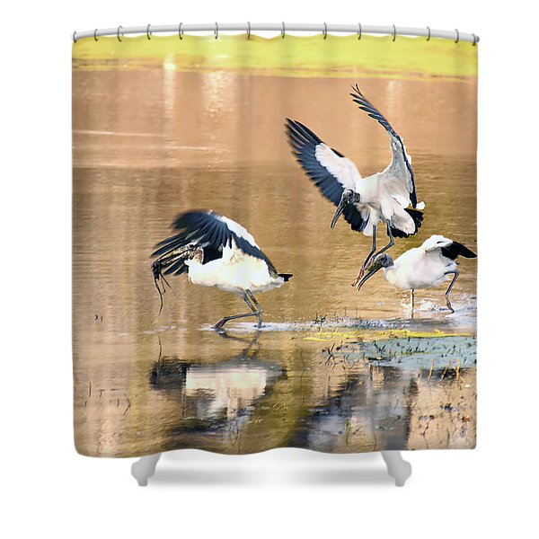 Stork Rugby Shower Curtain