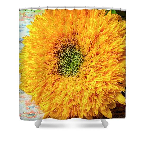 Sunflower Study Shower Curtain
