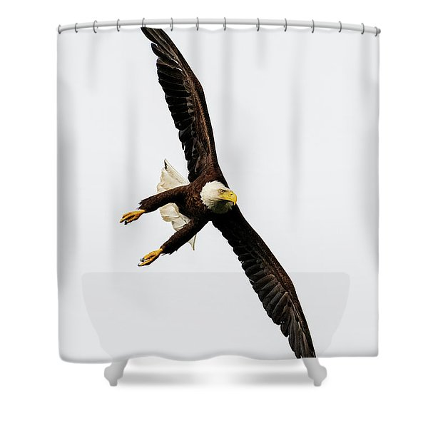 Talons Lowered Shower Curtain