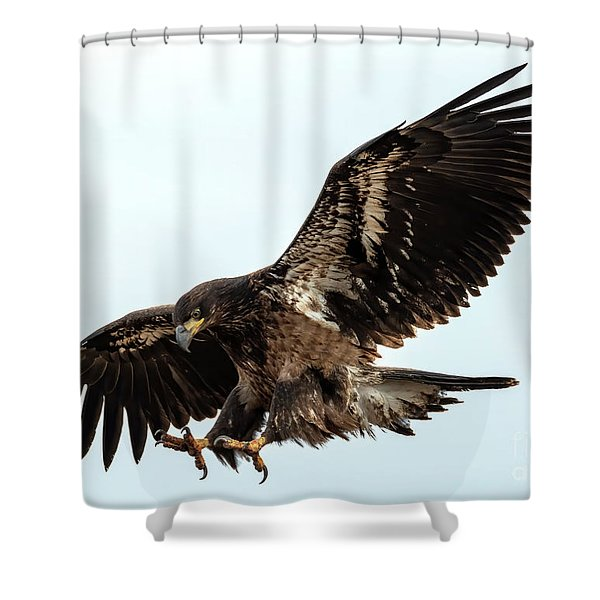 Talons First Shower Curtain