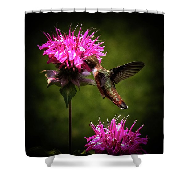 The Hummer Shower Curtain