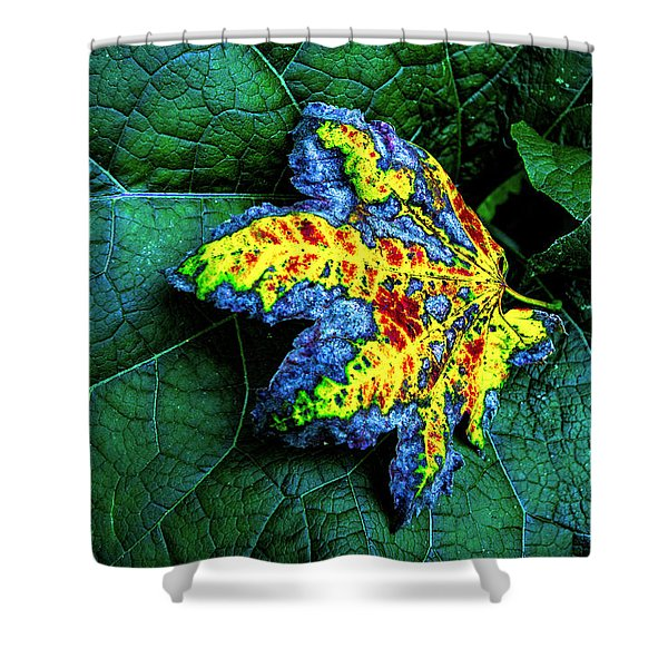 The Leaf Shower Curtain