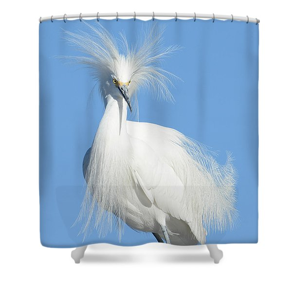 The Look Shower Curtain