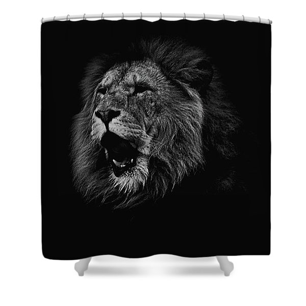 The Roaring Lion Shower Curtain
