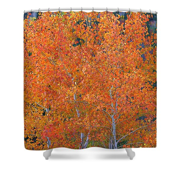 Translucent Aspen Orange Shower Curtain