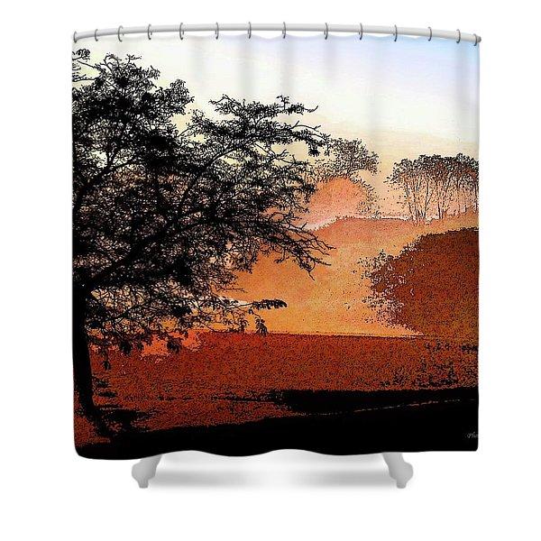 Tree In Morning Light Shower Curtain