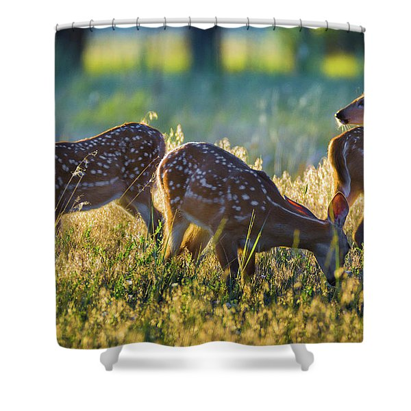 Shower Curtain featuring the photograph Triplets by John De Bord