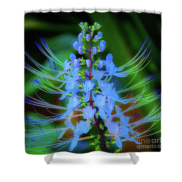 Tropical Plants And Flowers In Hawaii Shower Curtain