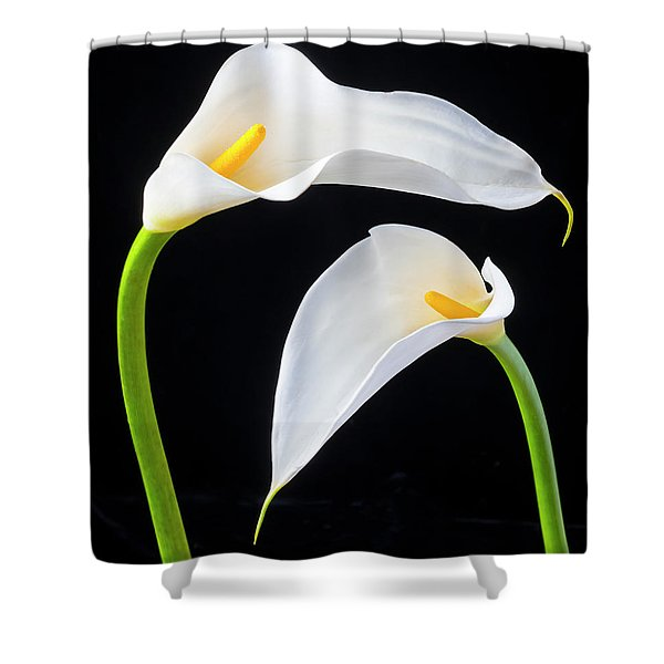 Two Lovely Calla Lilies Shower Curtain