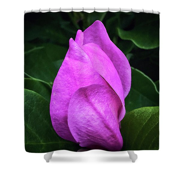 Unfolding Shower Curtain