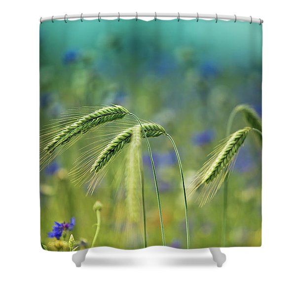 Wheat And Corn Flowers Shower Curtain