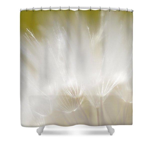 White Blossom 1 Shower Curtain