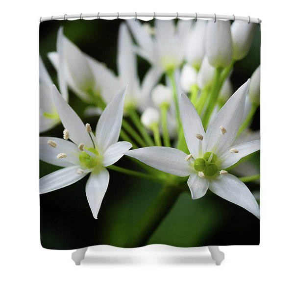 Shower Curtain featuring the photograph Wild Garlic by Nick Bywater