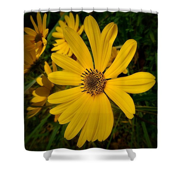 Wild Yellow Shower Curtain